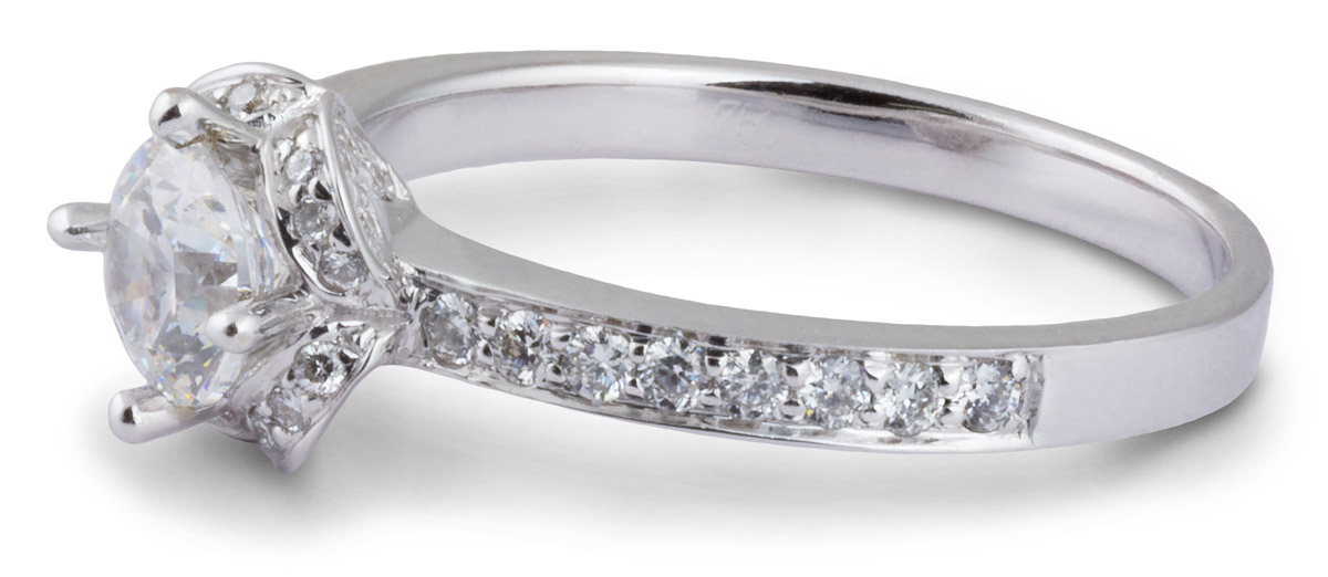 Arched Halo Engagement Ring with Diamond Accents - Side