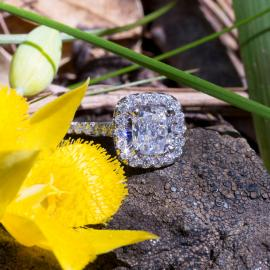 Cushion Diamond Halo Engagement Ring -