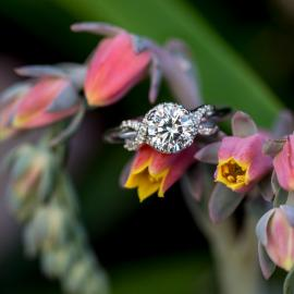 Mark Schneider : Infinity Engagement Ring - 2