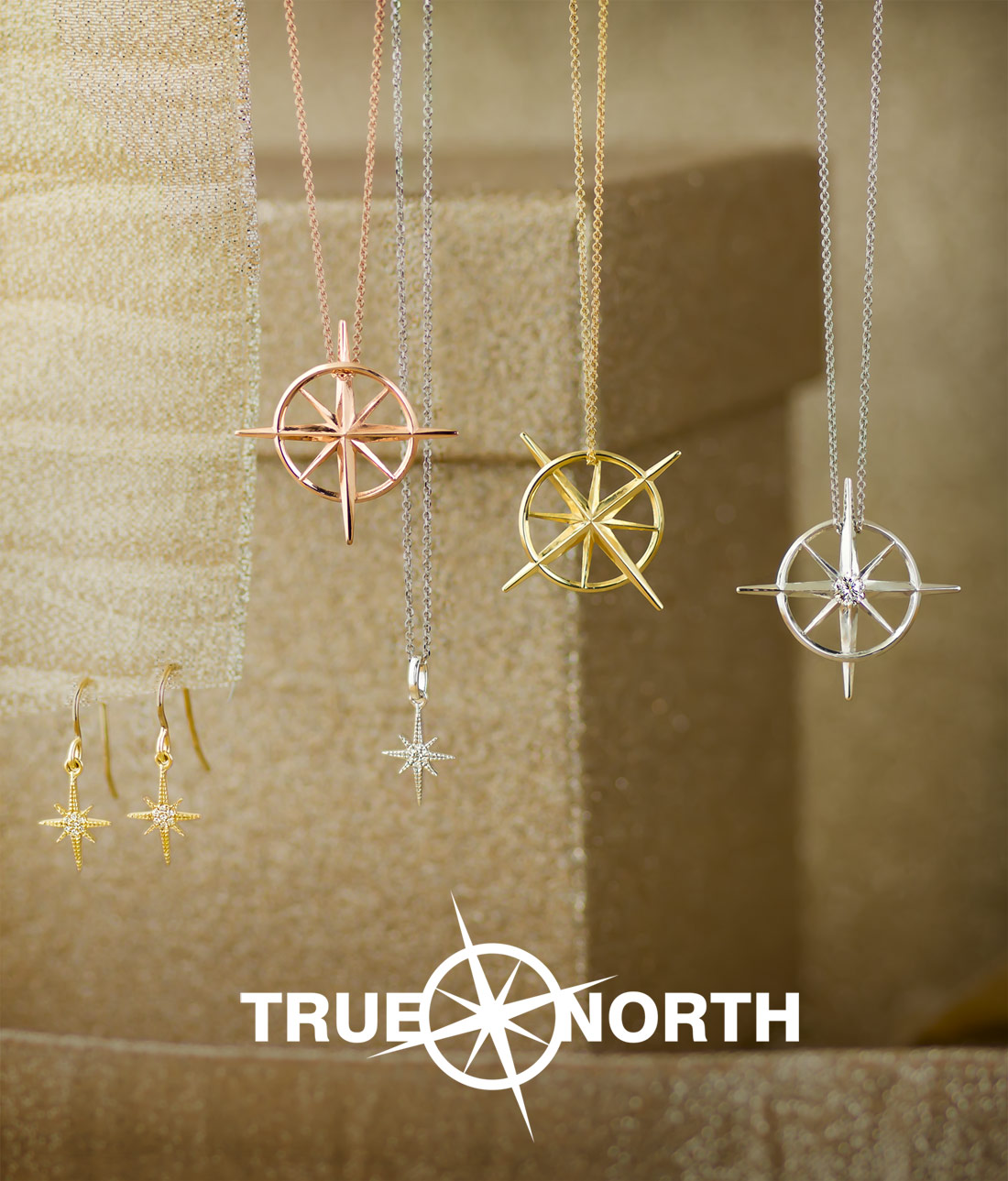 True North - Always be true to your North Star